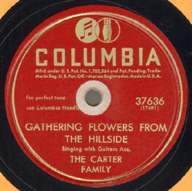 Gathering Flowers From The Hillside